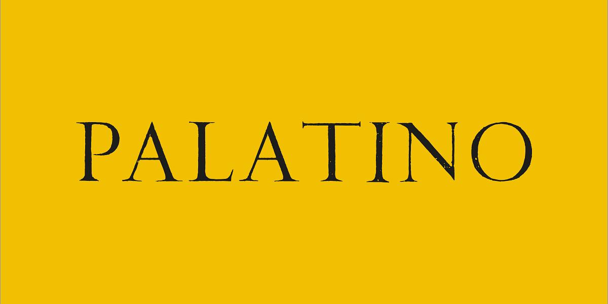 palatinosocial-1-w1200h600