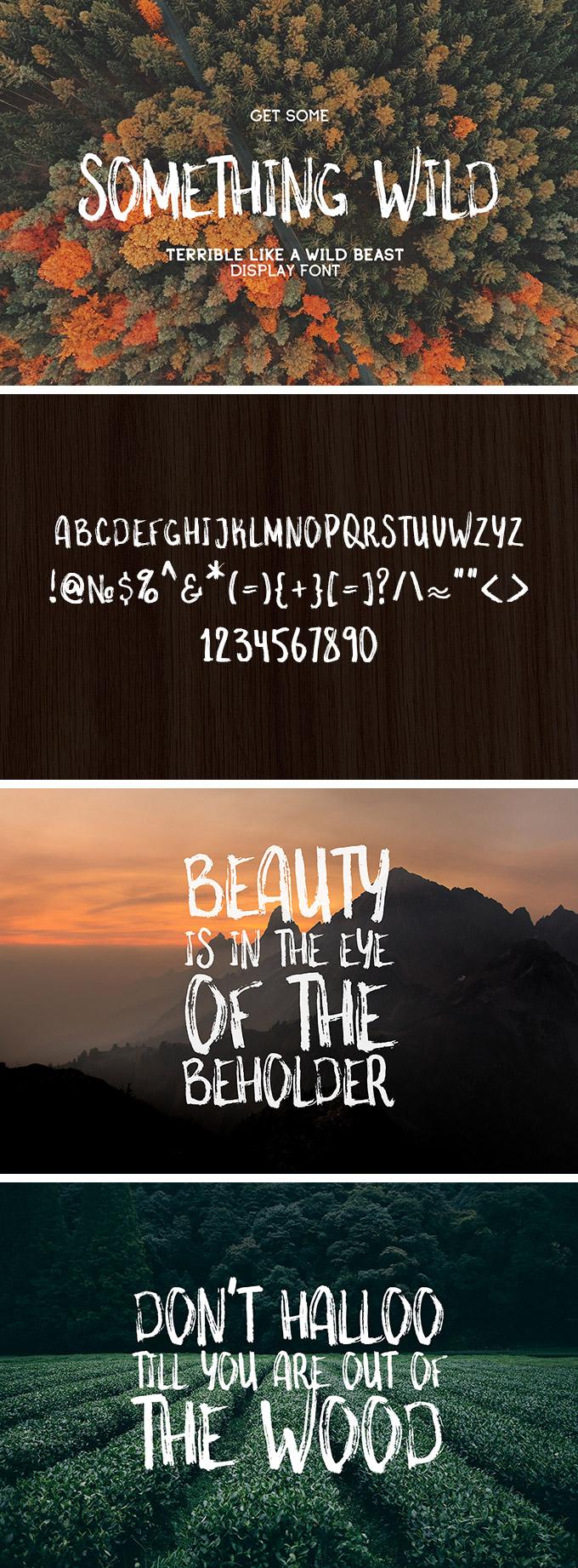 Something Wild Free Font