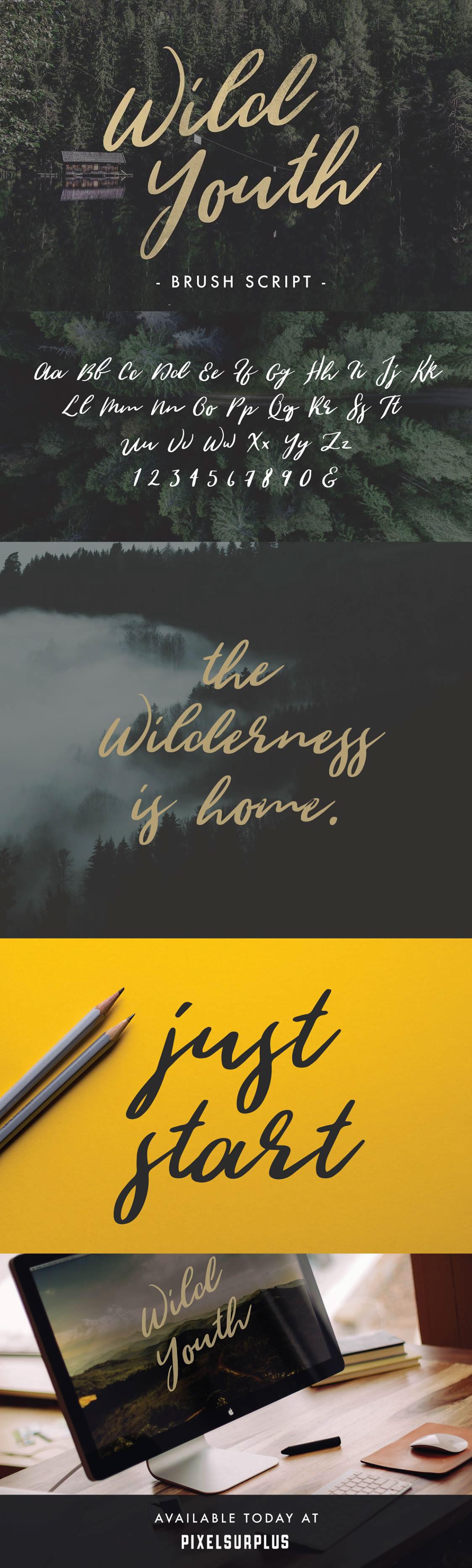Wild Youth - Free Brush Script