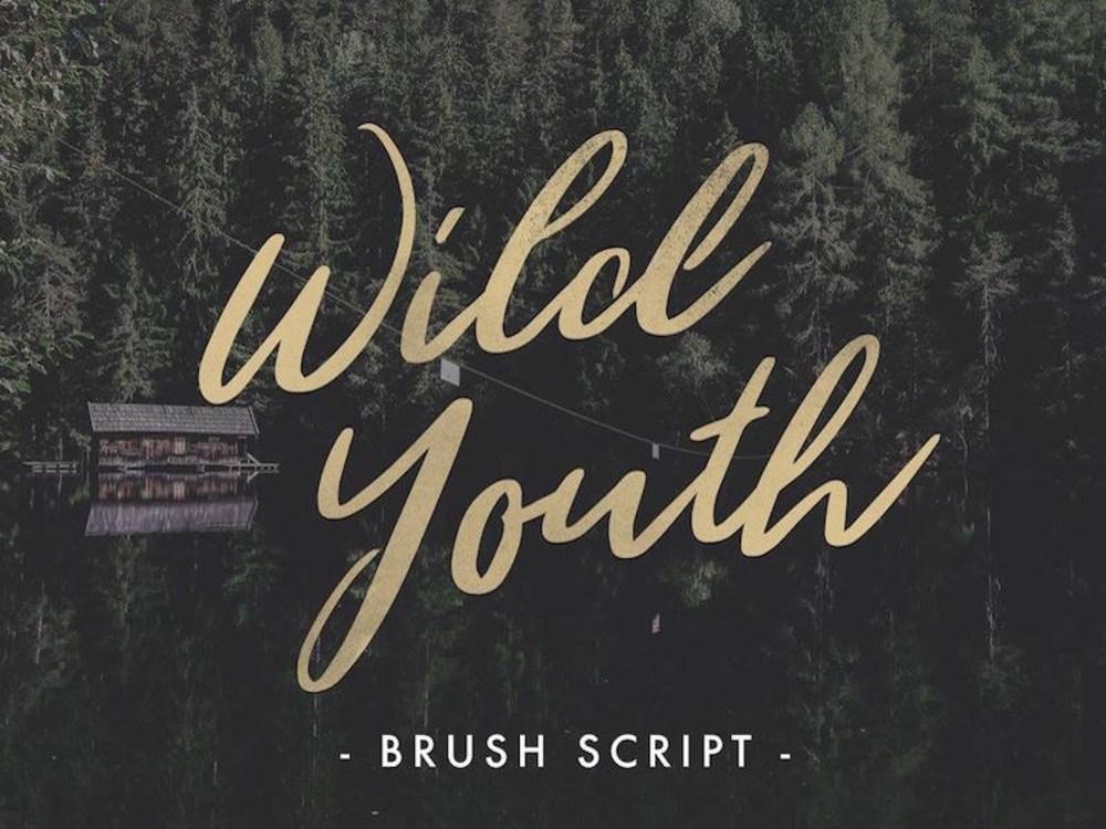 wild_youth_dribbble