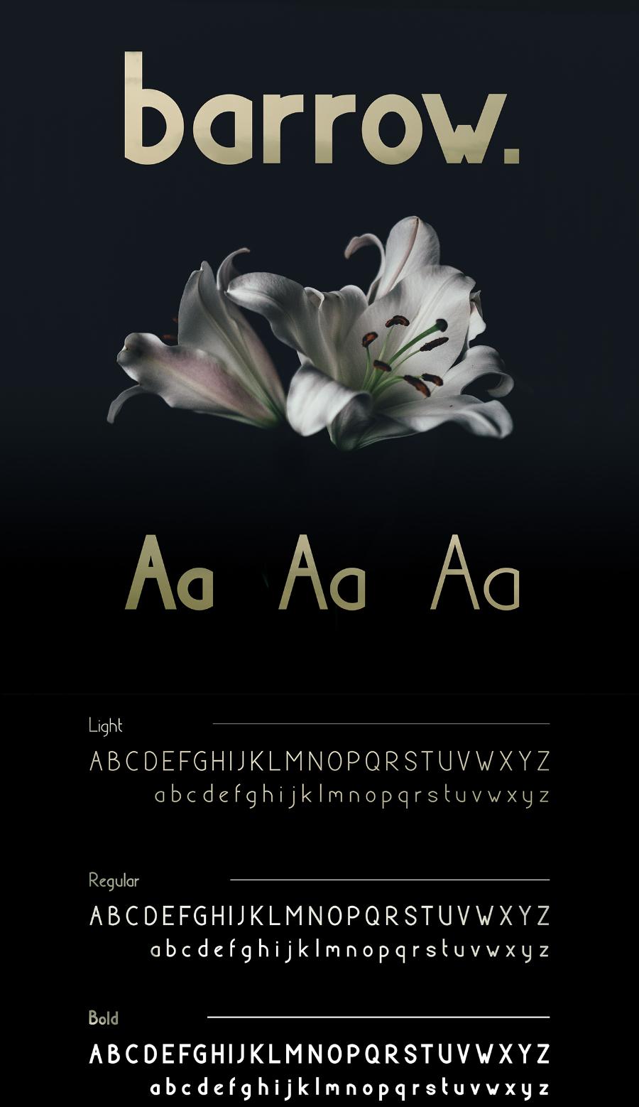 Szonja-Balint_Barrow-free-typeface_240517_prev01
