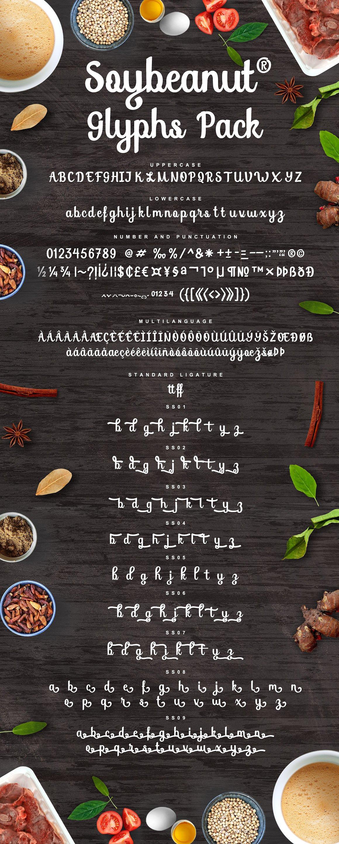 soybeanut-script-font-1