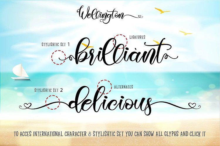 Wellington Script Font-2